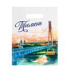 Пакет подарочный «Тюмень. Мост влюблённых»