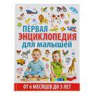 Первая энциклопедия для малышей от 6 месяцев до 3 лет. Скиба Т.