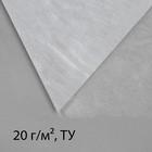 Материал укрывной, 10 ? 1,6 м, плотность 20, с УФ-стабилизатором, белый, Greengo, Эконом 20%