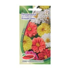 Семена цветов Георгина пионовидная Клауди микс,однолетник, 0,2гр