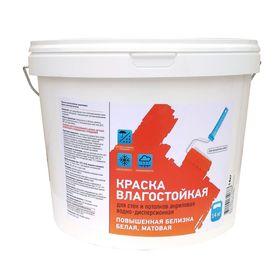 Краска влагостойкая ВД-АК 230М для стен и потолков акриловая 0,9 л (1,4 кг)