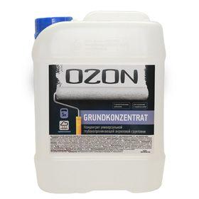 Грунт-концентрат OZON GrundKonzentrat ВД-АК 016М акриловая 1 л Ош