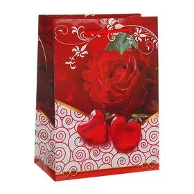 Пакет подарочный 'Влюбленность', 11,5 х 5 х 14,5 см Ош