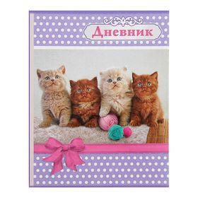 Дневник универсальный 1-11 класс 'Кошки', мягкая обложка Ош