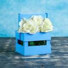"""Ящик-кашпо подарочный """"Однушка Лайт"""", двухреечный, ручка деревянная (складная), голубой"""