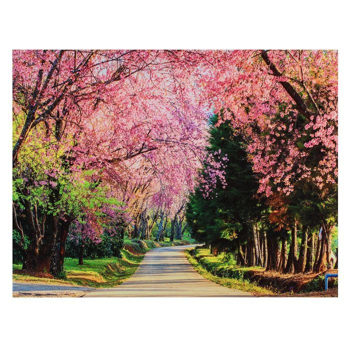 Картина на холсте Аллея сакуры 30х40 см