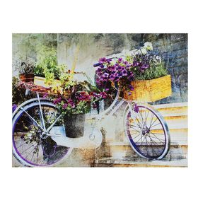 Картина на холсте 'Цветочный велосипед' 30х40 см Ош