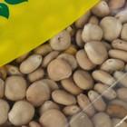 Семена Люпин белый, 0,5 кг - Фото 3