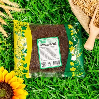 Семена Рапс, 0,5 кг - Фото 1
