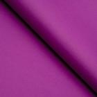 Бумага цветная, Тишью (шёлковая), 510 х 760 мм, Sadipal, 1 лист, 17 г/м2, фиолетовый