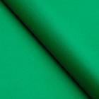 Бумага цветная, Тишью (шёлковая), 510 х 760 мм, Sadipal, 1 лист, 17 г/м2, тёмно-зелёный
