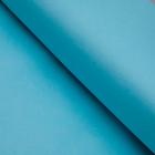 Бумага цветная, Тишью (шёлковая), 510 х 760 мм, Sadipal, 1 лист, 17 г/м2, небесно-синий