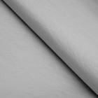 Бумага цветная, Тишью (шёлковая), 510 х 760 мм, Sadipal, 1 лист, 17 г/м2, серебристый