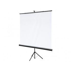 Экран на треноге Digis Kontur-C 180x180 DSKC-1102 напольный, рулонный Ош
