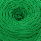 Пряжа трикотажная широкая 50м/160гр, ширина нити 7-9 мм  (зелёный) - Фото 1