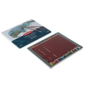 Пастель сухая художественная в карандаше, набор Derwent Pastel Hard 24 цвета, в металлической упаковке