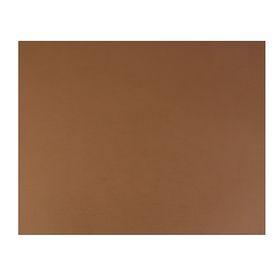 Бумага для пастели 500x650 мм Fabriano Tiziano №09, 1 лист, 160 г/м², кофе