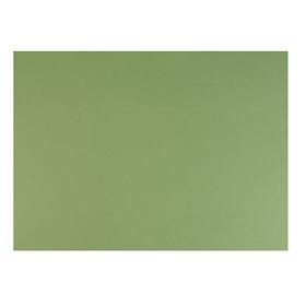 Бумага для пастели 500*650 Fabriano Tiziano 1л 160г/м2 №14 зелёный мох 52551014