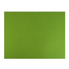 Бумага для пастели 500x650 мм Fabriano Tiziano №43, 1 лист, 160 г/м², фисташковый