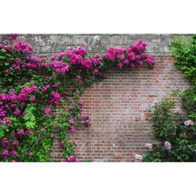 Фотосетка, 300 × 158 см, с фотопечатью, «Кирпичная стена» Ош