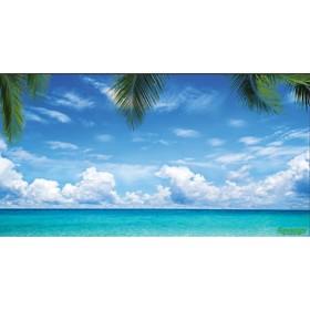 Фотобаннер, 300 × 158 см, с фотопечатью, «Море» Ош