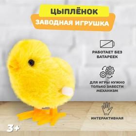 Игрушка заводная «Цыплёнок» Ош