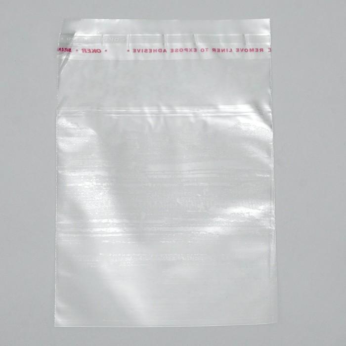 Пакет с липкой лентой 9.5 х 10.5/4 см
