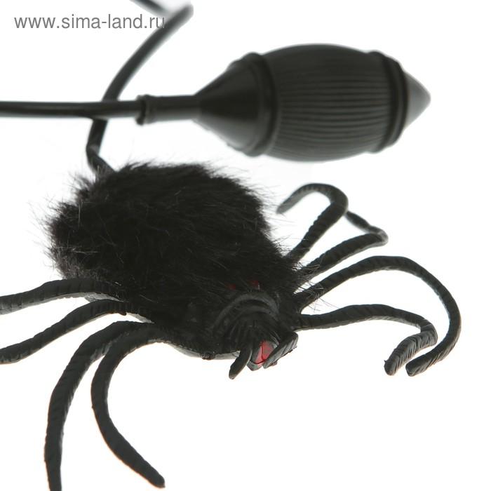 прыгучий паук игрушка