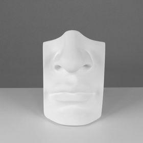 Гипсовая фигура, нос с губами Давида «Мастерская Экорше», 16 х 11 х 25 см Ош