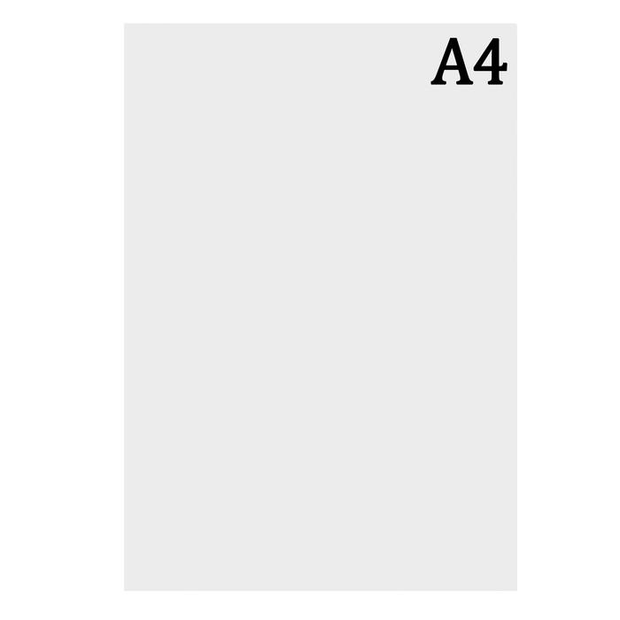 Ватман чертёжный, А4, 200 г/м2