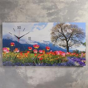 Часы на холсте 'Цветочное поле', 50х100  см, микс Ош