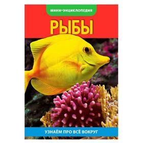 Мини-энциклопедия «Рыбы», 20 стр. Ош