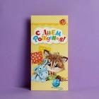 Конверт для денег «С Днем Рождения», котик, 16,5 × 8 см