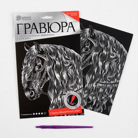 Гравюра «Лошадь» с металлическим эффектом серебра А5 Ош