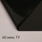 Плёнка полиэтиленовая, техническая, толщина 60 мкм, 3 ? 10 м, рукав (1,5 м ? 2), чёрная, 2 сорт, Эконом 50 %