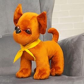 Мягкая игрушка «Собачка Чи-Хуа-Хуа», 35 см