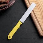 Нож кухонный «Акли», зубчатое лезвие 10,5 см, цвет МИКС - Фото 3