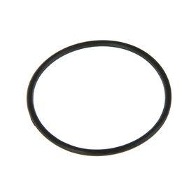 Уплотнительное кольцо для колбы 10SL
