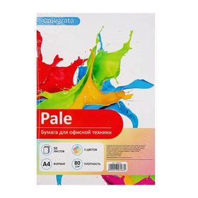 Бумага цветная А4, 50 листов Calligrata Пастель, 5 цветов, 80 г/м² Ош