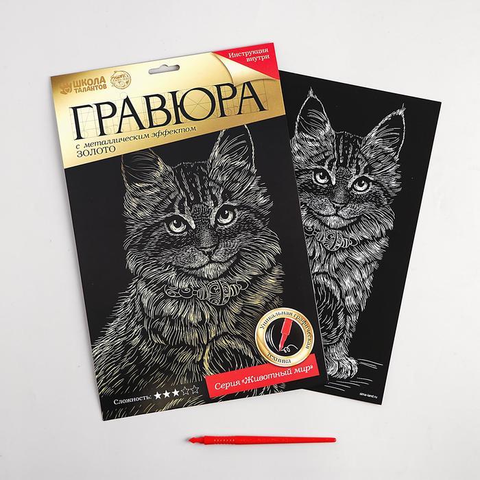Гравюра «Котёнок мейн-кун» с металлическим эффектом «золото» А4