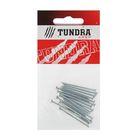 Гвоздь строительный TUNDRA krep, 2х40 мм, без покрытия, в упаковке 20 шт.