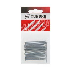 Гвоздь строительный TUNDRA krep, 2.5х50 мм, без покрытия, в упаковке 20 шт. Ош