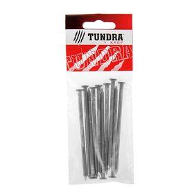 Гвозди строительные TUNDRA krep, 4х100 мм, без покрытия, 10 шт. Ош