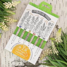 """Растущие карандаши """"Прованские травы"""" набор 6 шт. цветные"""