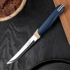 Нож для стейка Tramontina Multicolor, лезвие 12,5 см, сталь AISI 420
