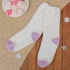 Носки махровые, размер 19-21, цвет белый/фиолетовый