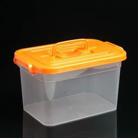 Контейнер для хранения с крышкой 6,5 л, 31×20×18 см, цвет МИКС