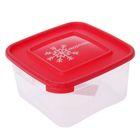 """Контейнер для замораживания продуктов 1 л """"Морозко"""" , квадратный, цвет МИКС"""