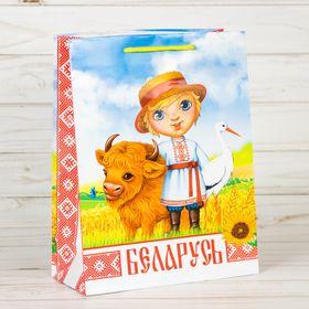 Пакет вертикальный МС «Беларусь» Ош