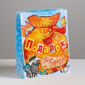 Пакет ламинированный с открыткой «Новогодние подарки», 18 × 23 × 8 см Ош